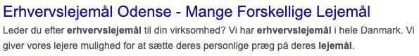 meta description eksempel